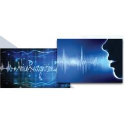 Authentification biometrique de la voix et autres