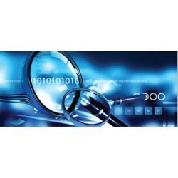 Investigations numériques