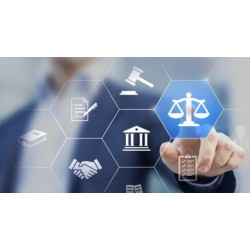 Assistance with litigation procedures in cyberspace